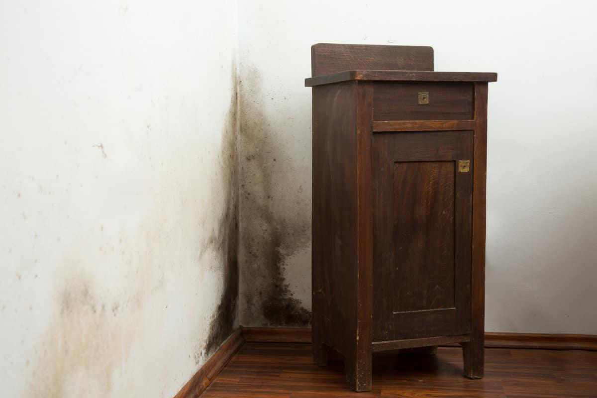 doorslaand vocht oorzaken behandeling tips tricks. Black Bedroom Furniture Sets. Home Design Ideas