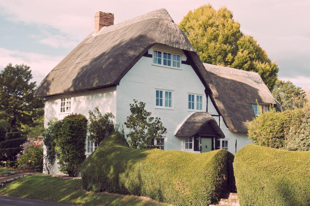 rieten daken