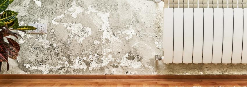 salpeter verwijderen op de muren